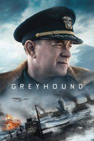 Greyhound เกรย์ฮาวด์