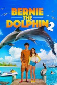 BERNIE THE DOLPHIN 2 (2019) เบอร์นี่ โลมาน้อย หัวใจมหาสมุทร